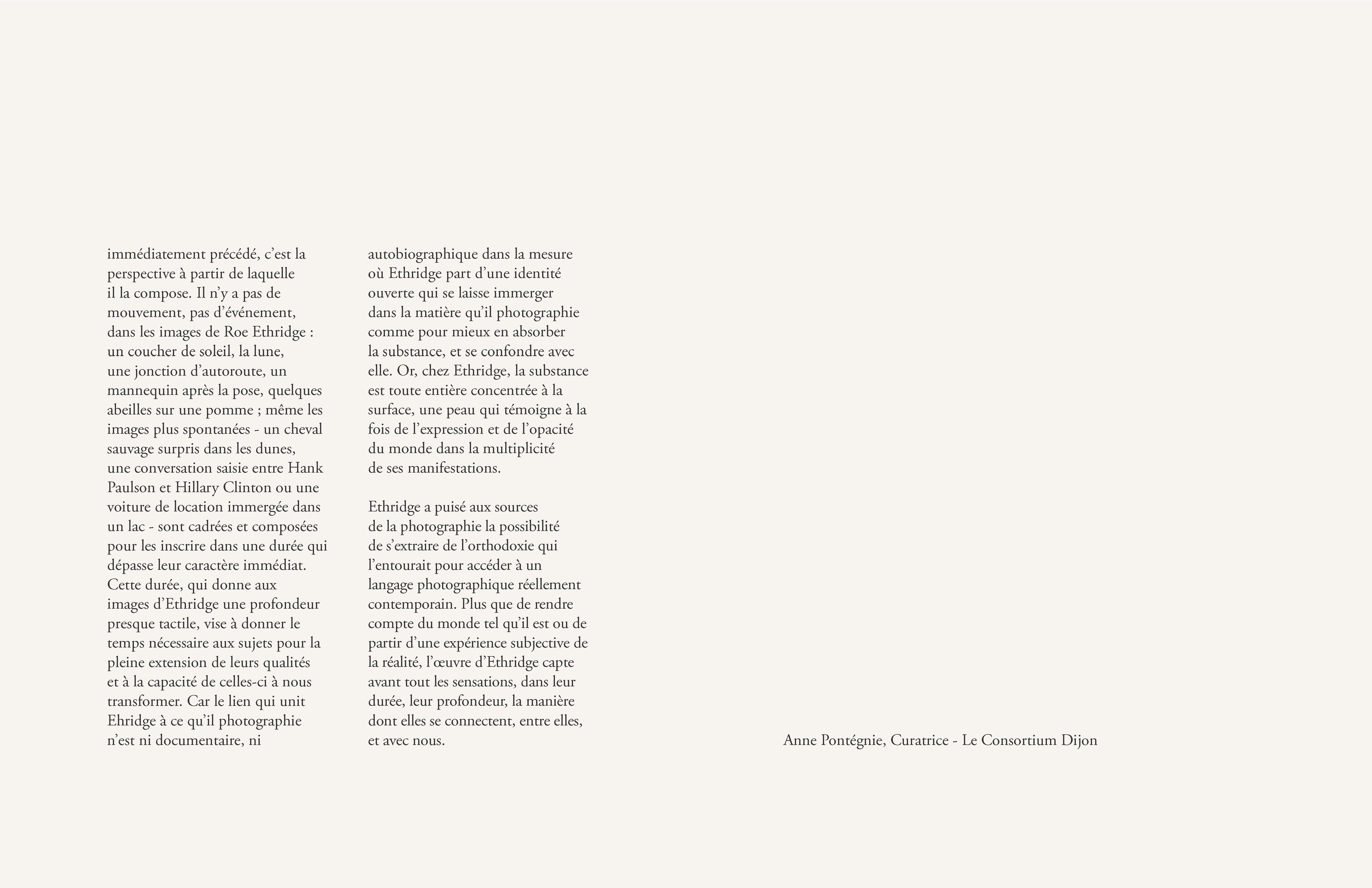 """Anne Pontégnie, """"Roe Ethridge. Year Zero"""" in: """"Roe Ethridge"""". Dijon/Leuven: Les Presses du Réel/M-Museum, 2013."""